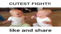 Cutest Kids Fight