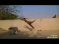 Check The Talent Of This Pakistani Boy