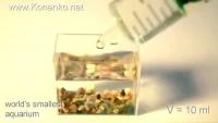 Smallest Equarium