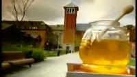 Amazing Documentary about Honey